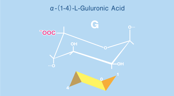 α-(1-4)-L-Guluronic Acid