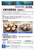 米菓の品質改良